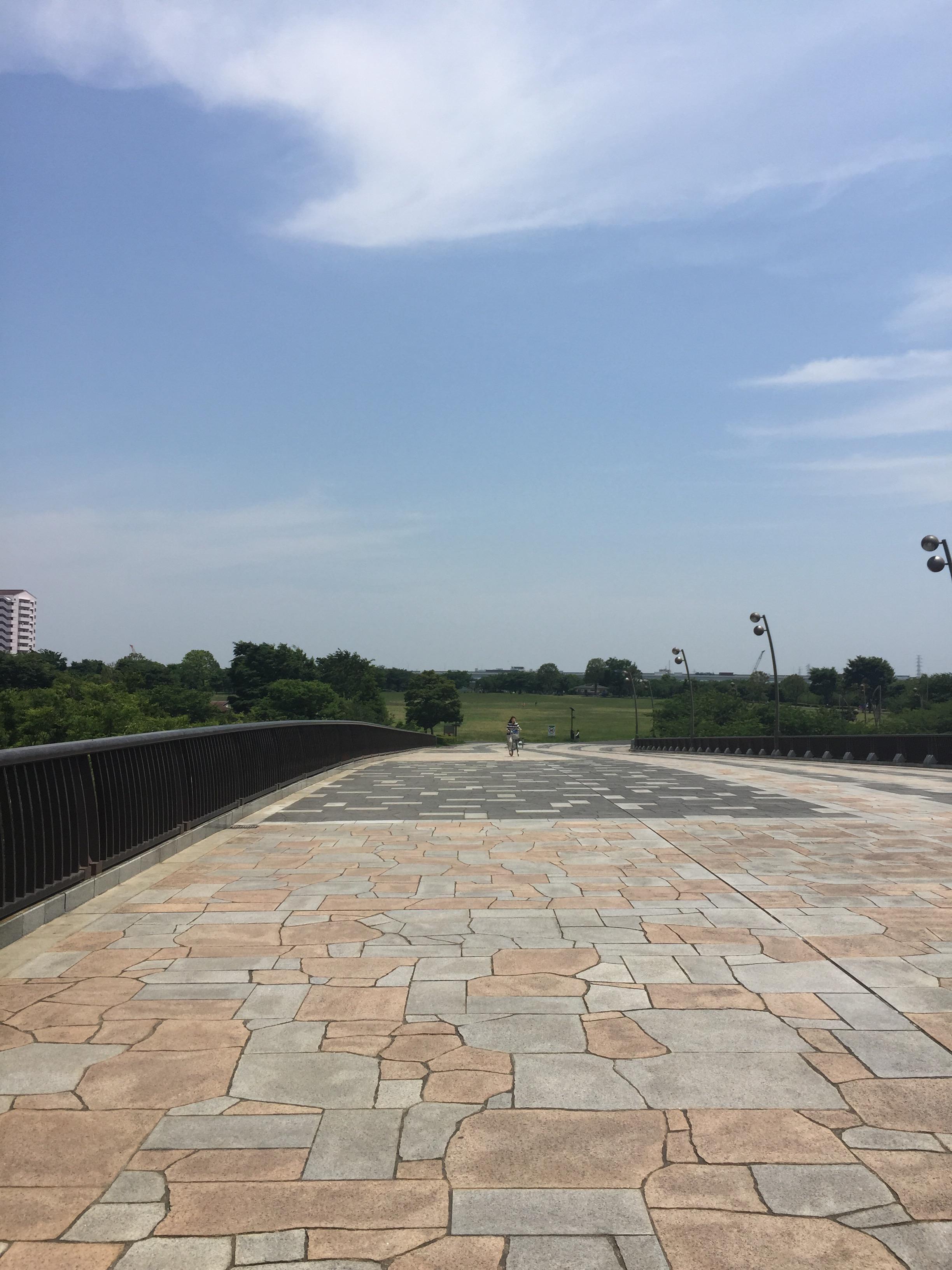 img 2279 ここ東京?緑溢れる公園!